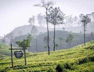 Naturtour Sri Lanka